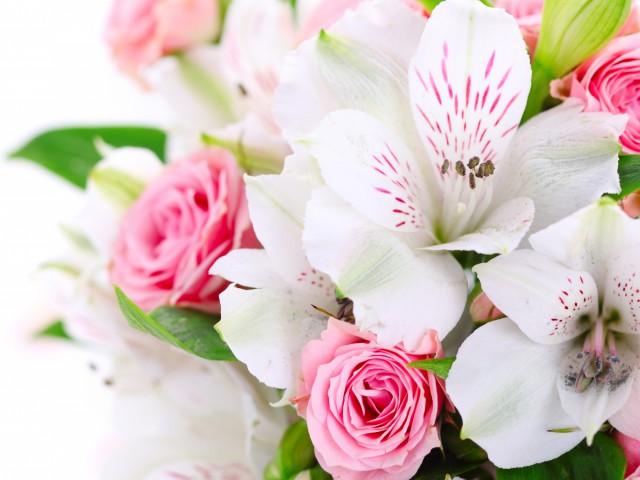 Служба доставки цветов «Мир цветов»